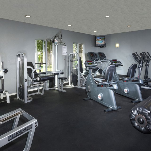 Terra Vista Apartments - Fitness Center