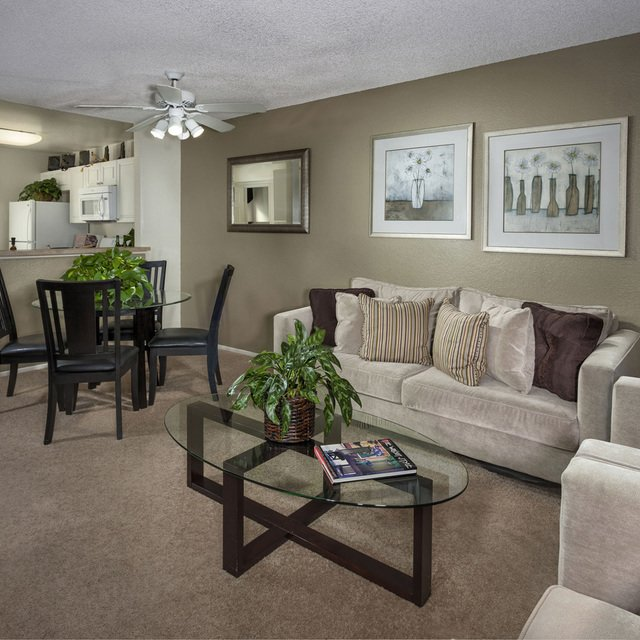 Terra Vista Apartments - Living Room with Suede Couches