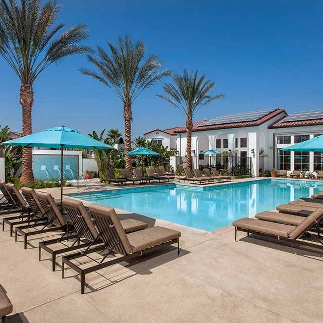 The Enclave at Homecoming Terra Vista - Pool with lounge seating