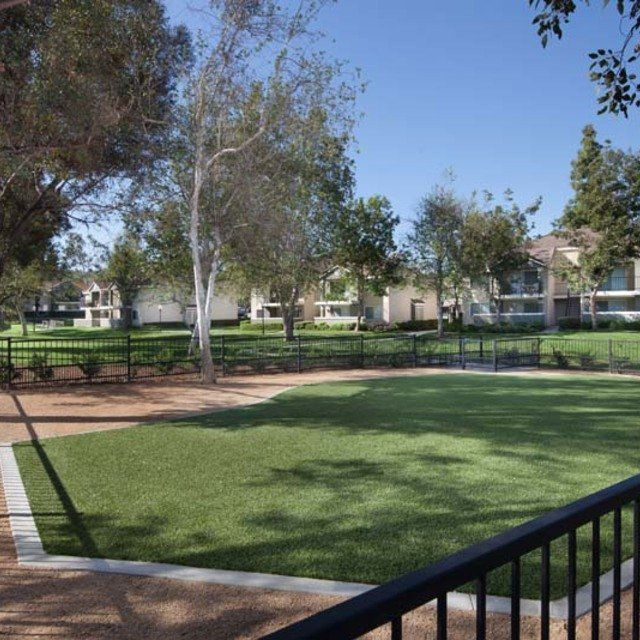 Green Valley Apartments - Dog park