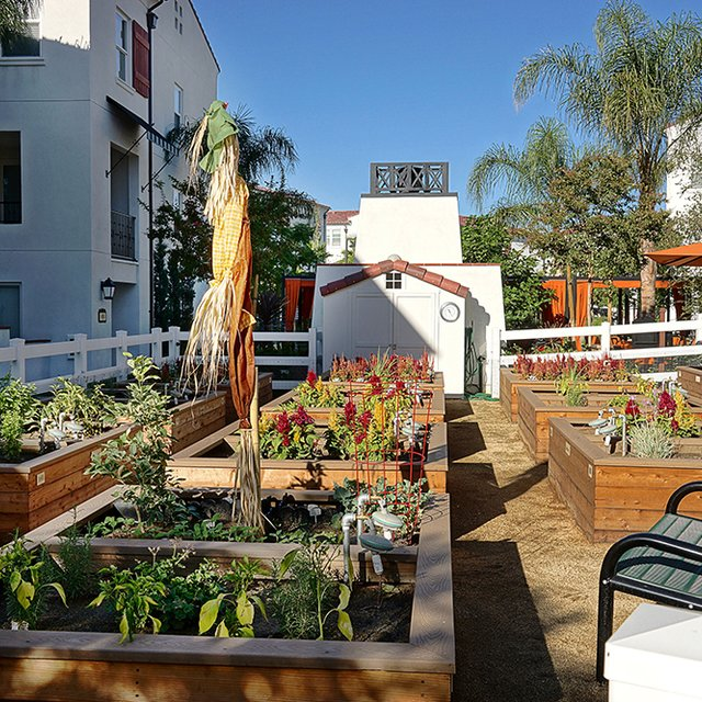 Santa Barbara Apartments - Community Garden