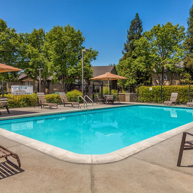 Antelope Ridge Apartments - Pool with Lounge Seating
