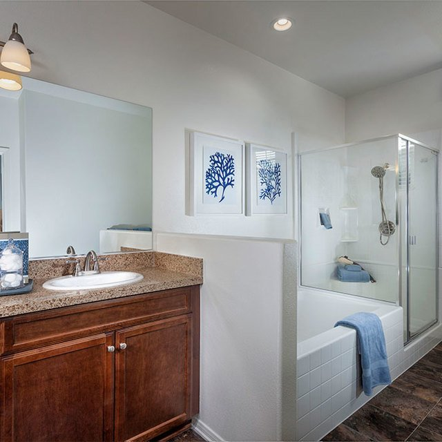 Homecoming at the Preserve Apartments - Bath tub and shower