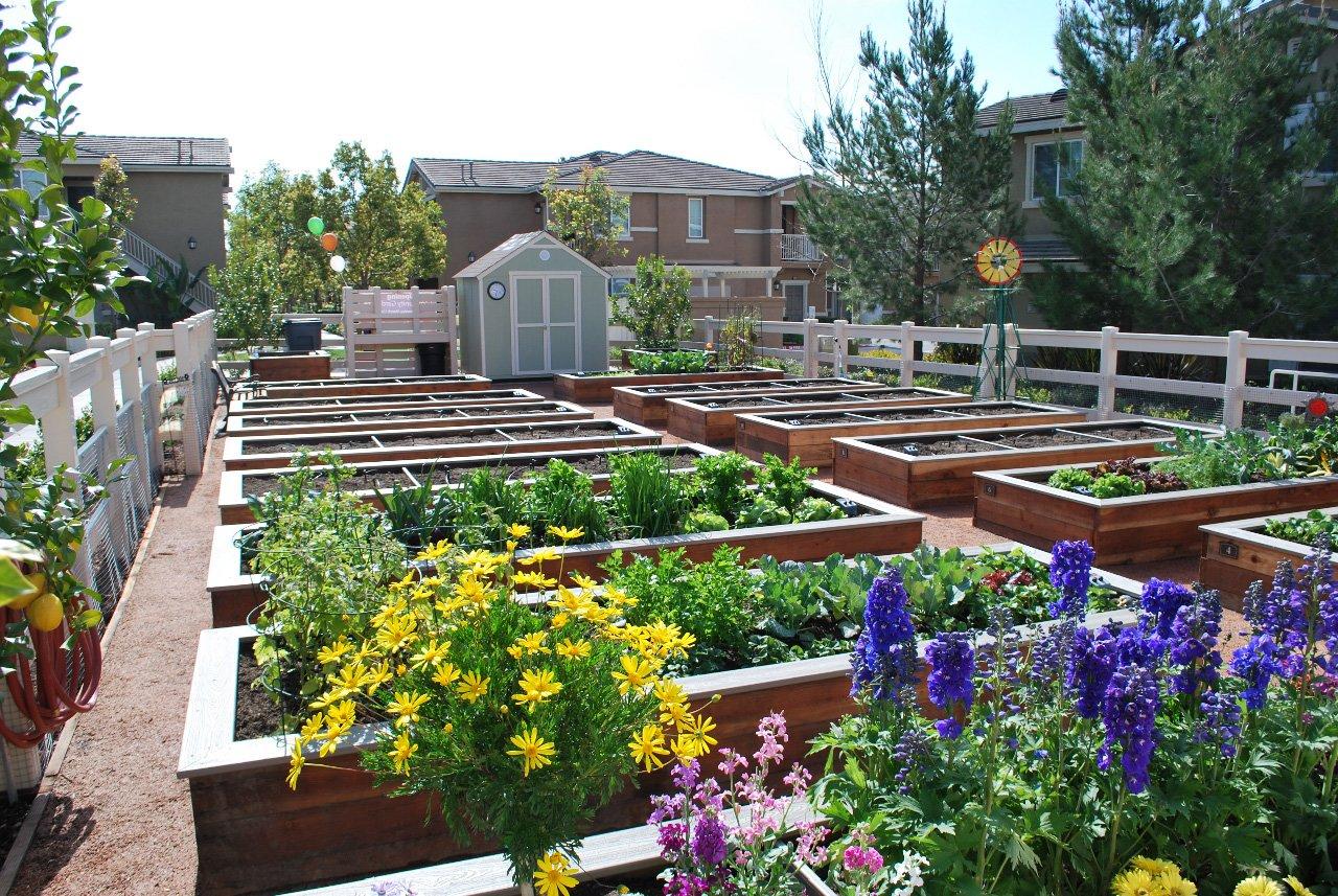 homecoming at terra vista apartment homes for rent rancho cucamonga